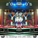 Vigro Deep - The Groove Mix Vol 02