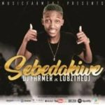 Dj FarmerSA & LubzTheDj – Sebadakiwe mp3 download