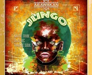 Native Tribe, Da Q-Bic & Thab De Soul – Jungo (Original Mix) Mp3 download