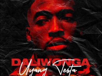 Daliwonga – Tester Ft. King Monada