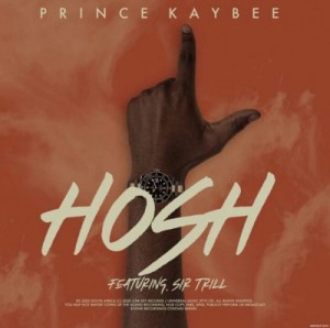 Prince Kaybee – Hosh Ft. Sir Trill (Studio Edit)