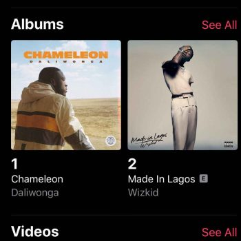 Daliwonga's Chameleon Overtakes Wizkid Album and Sits At No. 1 On iTunes